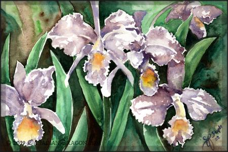 Нарисовать красавица весна